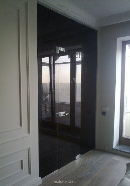 Перегородка стеклянная с дверью