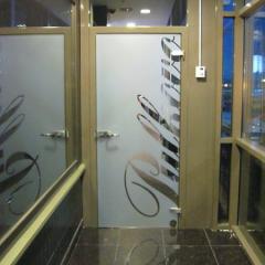 Входная, цельностеклянная, распашная дверь